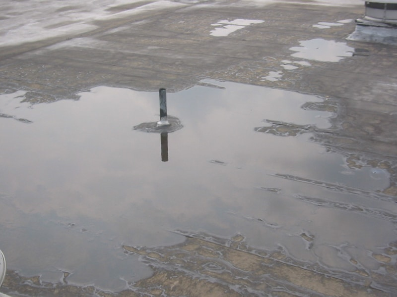 Ponding water on a defective roof, inspected by Garland UK